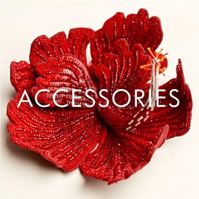 Dream Blueprints accessories